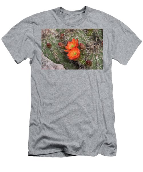 Cactus Blossoms Men's T-Shirt (Athletic Fit)