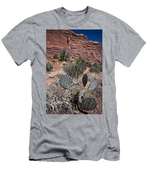 Cactus In Arches Nat'l Park Men's T-Shirt (Athletic Fit)