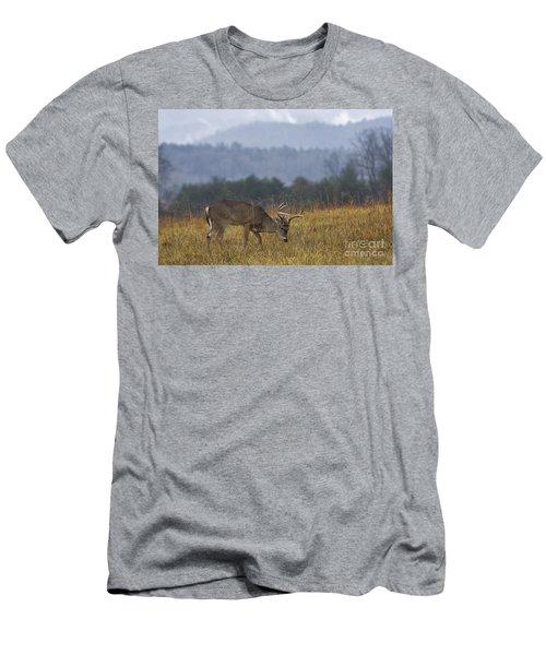 Cades Cove White-tail - D007884 Men's T-Shirt (Athletic Fit)