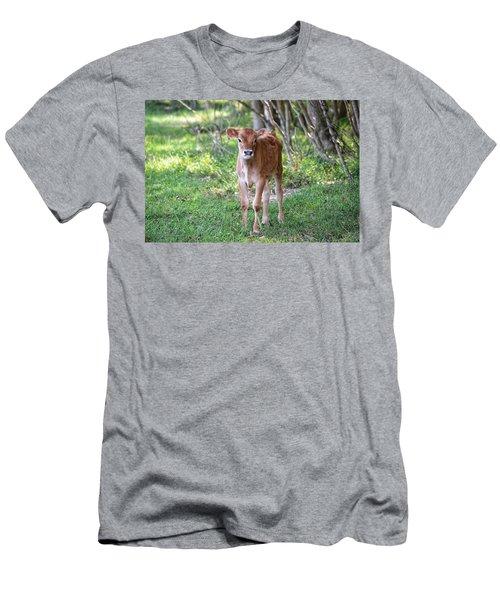 Calf  Men's T-Shirt (Athletic Fit)
