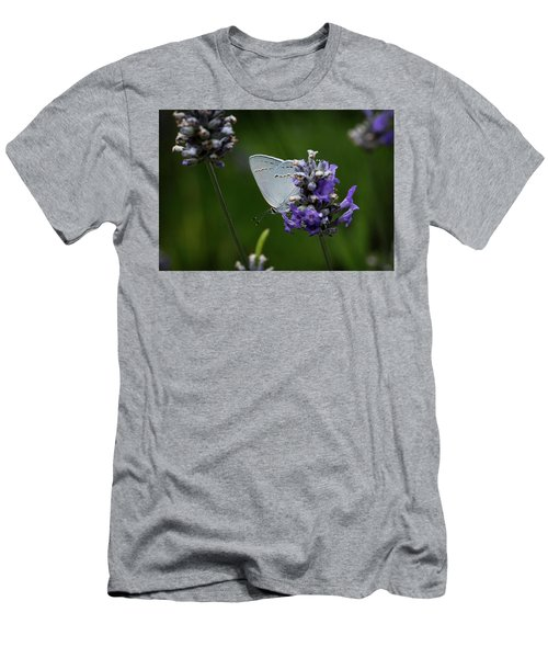 California Hairstreak Butterfly Men's T-Shirt (Athletic Fit)