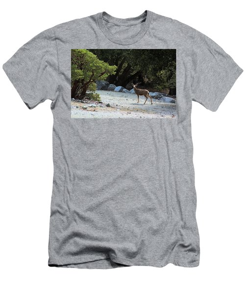 California Mule Deer Men's T-Shirt (Slim Fit) by Viktor Savchenko
