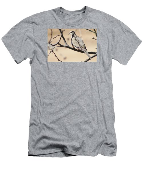 Camouflaged Mourning Dove Men's T-Shirt (Athletic Fit)