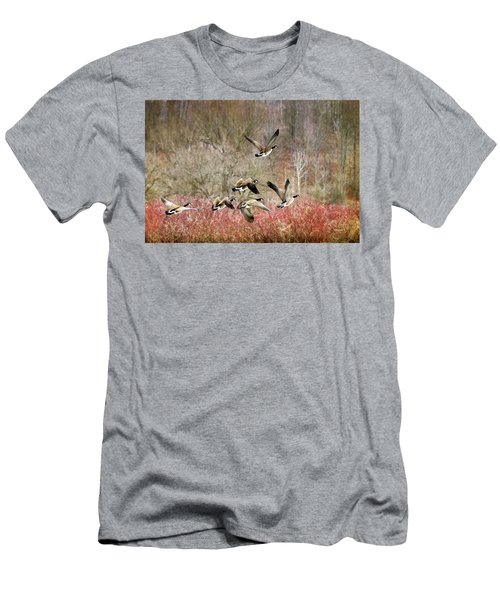 Canada Geese In Flight Men's T-Shirt (Athletic Fit)