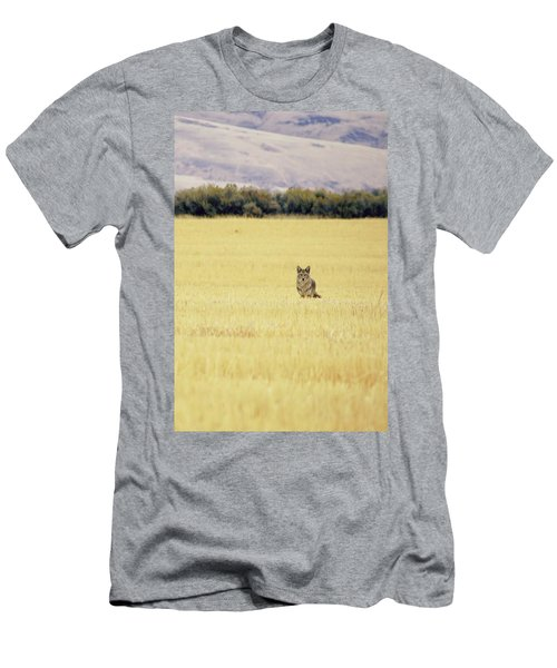 Canidae Men's T-Shirt (Athletic Fit)