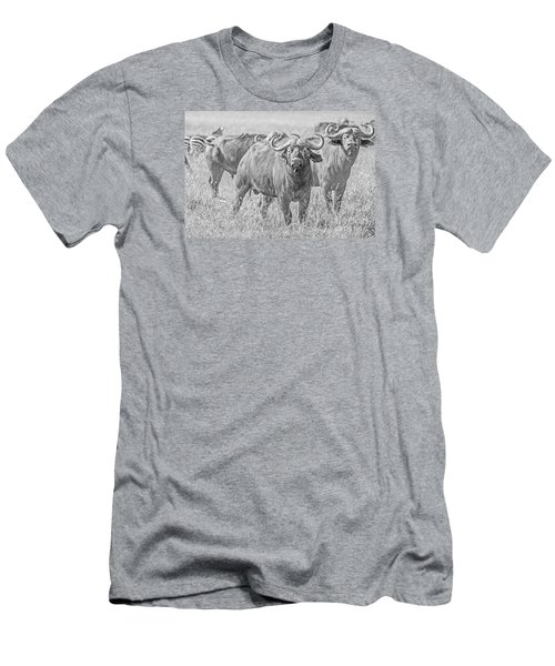 Cape Buffalos In Serengeti Men's T-Shirt (Athletic Fit)