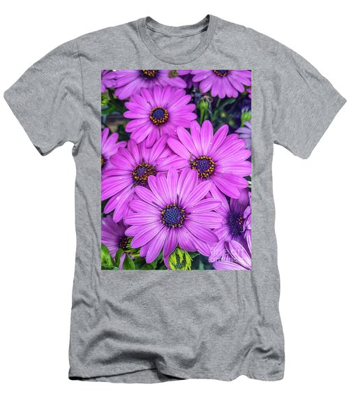 Cape Daisys - Purple Men's T-Shirt (Athletic Fit)