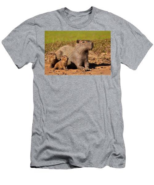 Capybara Family Enjoying Sunset Men's T-Shirt (Athletic Fit)