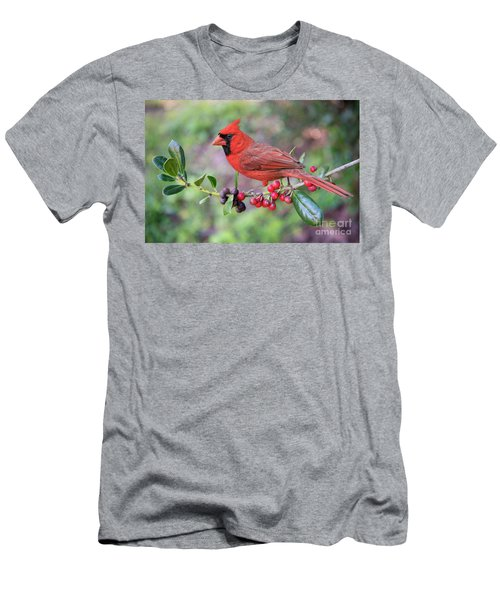 Cardinal On Holly Branch Men's T-Shirt (Slim Fit) by Bonnie Barry