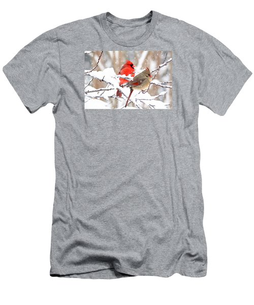 Cardinals In The Winter Men's T-Shirt (Slim Fit) by Trina Ansel