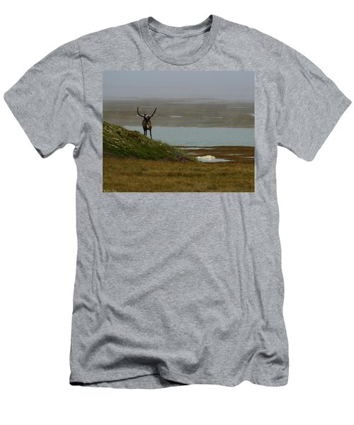 Caribou Fog Men's T-Shirt (Athletic Fit)