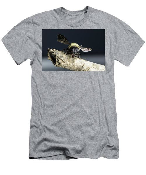 Carpenter Bee Men's T-Shirt (Athletic Fit)