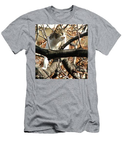 Cat Hunting Bird Men's T-Shirt (Athletic Fit)