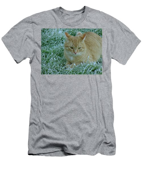 Cat In Frosty Grass Men's T-Shirt (Athletic Fit)