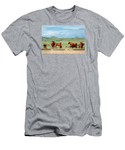 Cattle Guards Men's T-Shirt (Athletic Fit)