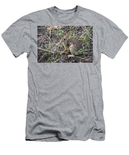 Cedar Hill Bunny Men's T-Shirt (Slim Fit) by Ricky Dean