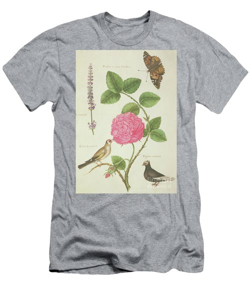 Centifolia Rose, Lavender, Tortoiseshell Butterfly, Goldfinch And Crested Pigeon Men's T-Shirt (Slim Fit) by Nicolas Robert