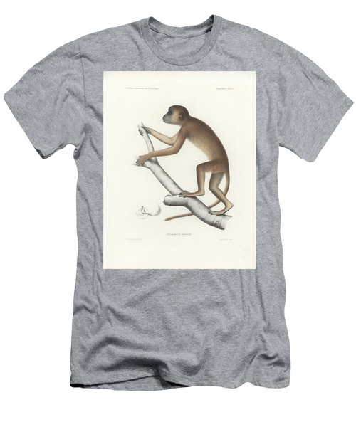 Central Yellow Baboon, Papio C. Cynocephalus Men's T-Shirt (Slim Fit) by J D L Franz Wagner