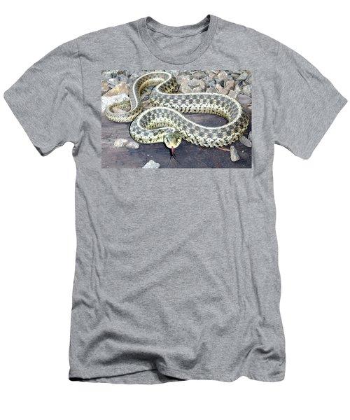 Checkered Garter Snake Men's T-Shirt (Athletic Fit)