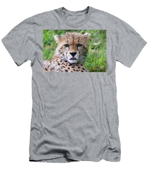 Men's T-Shirt (Slim Fit) featuring the photograph Cheetah by MGL Meiklejohn Graphics Licensing