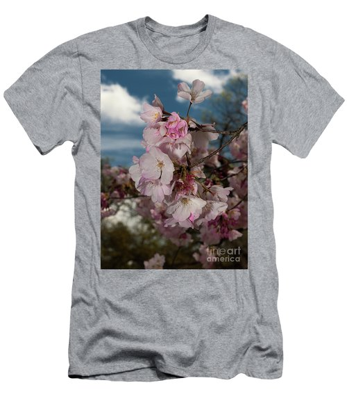 Cherry Blossoms Vertical Men's T-Shirt (Athletic Fit)