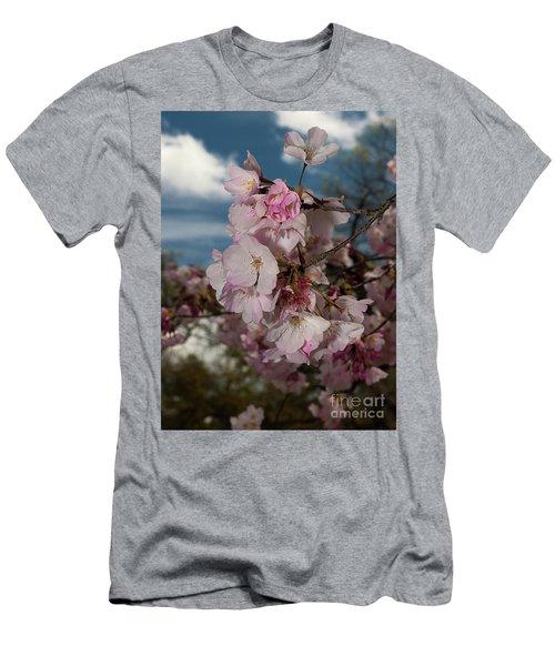 Cherry Blossoms Vertical Men's T-Shirt (Athletic Fit)
