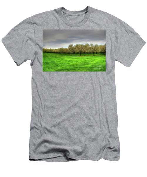 Cherry Trees Forever Men's T-Shirt (Athletic Fit)