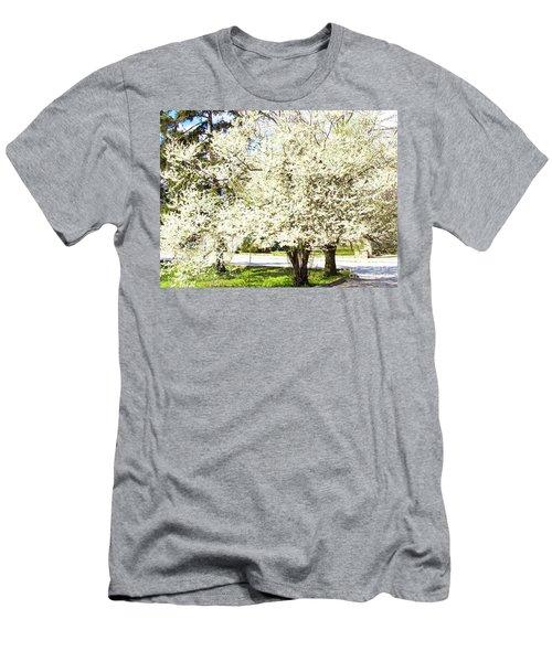 Cherry Trees In Blossom Men's T-Shirt (Slim Fit) by Irina Afonskaya