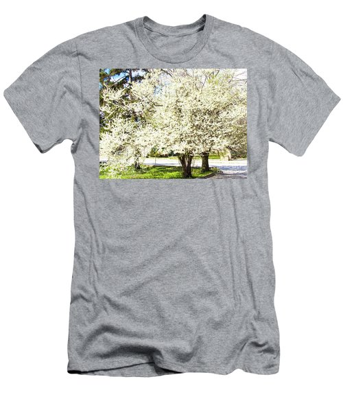 Cherry Trees In Blossom Men's T-Shirt (Athletic Fit)