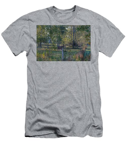 1009 - Chestnut Horse Among The Trees Men's T-Shirt (Athletic Fit)