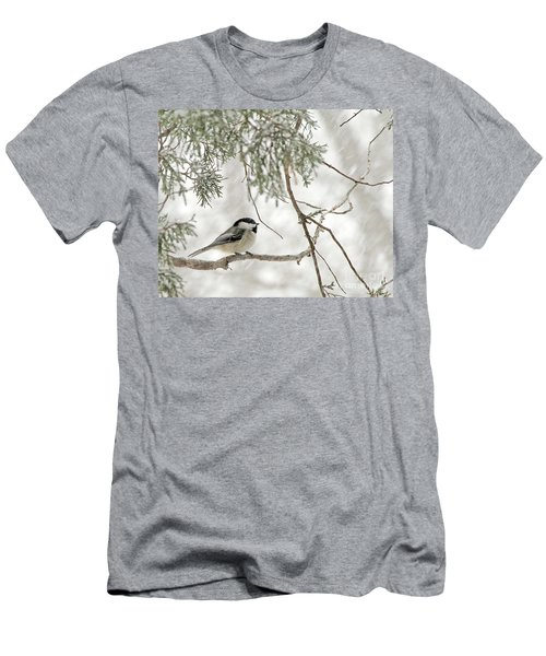 Chicadee In A Snow Storm  Men's T-Shirt (Athletic Fit)