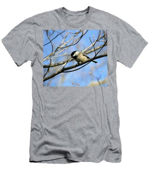 Chickadee Men's T-Shirt (Slim Fit) by Cathy Harper
