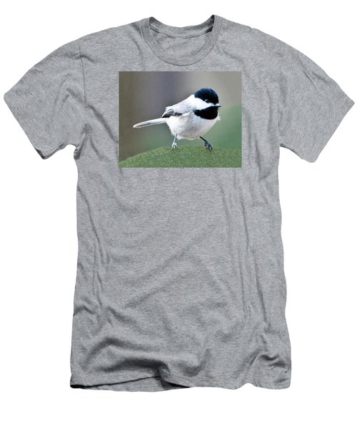 Chickadee Profile Perched 944 Men's T-Shirt (Athletic Fit)
