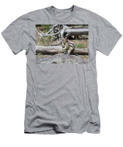 Chipmunk At Yellowstone Men's T-Shirt (Slim Fit) by Ausra Huntington nee Paulauskaite