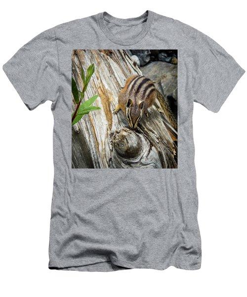 Chipmunk On A Log Men's T-Shirt (Athletic Fit)