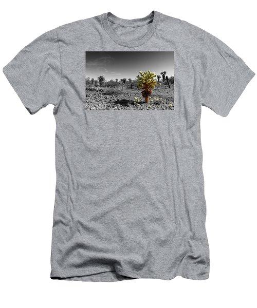 Cholla Cactus Men's T-Shirt (Athletic Fit)