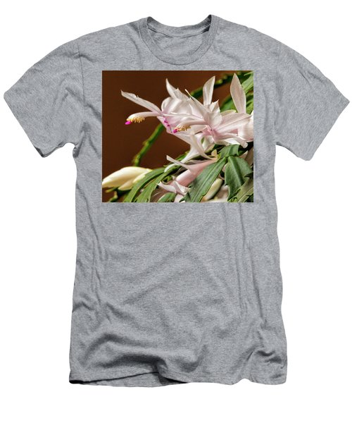 Christmas Cactus Men's T-Shirt (Athletic Fit)