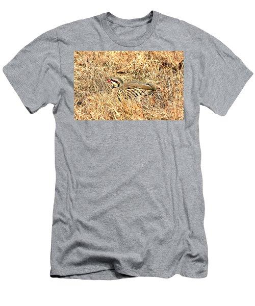 Men's T-Shirt (Slim Fit) featuring the photograph Chuckar Bird Hiding In Grass by Sheila Brown
