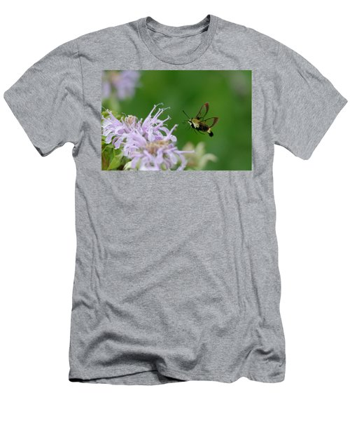 Clearwing Moth Men's T-Shirt (Athletic Fit)