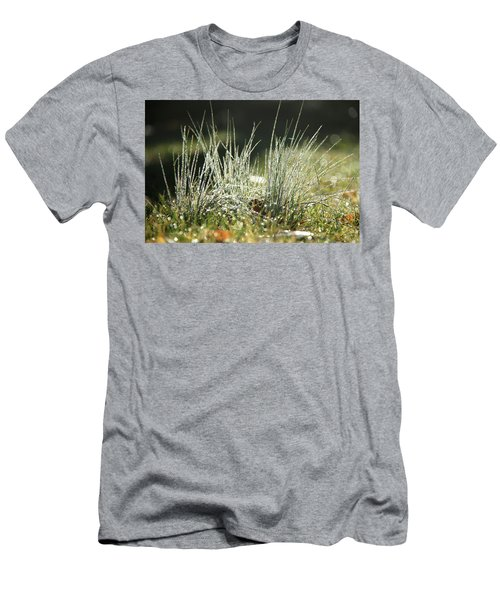 Close-up Of Dew On Grass, In A Sunny, Humid Autumn Morning Men's T-Shirt (Athletic Fit)