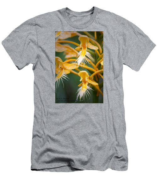 Men's T-Shirt (Slim Fit) featuring the photograph Close-up Of Yellow Fringed Orchid by Bob Decker