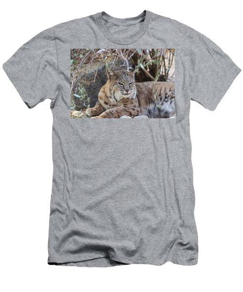 Closeup Of Bobcat Men's T-Shirt (Athletic Fit)