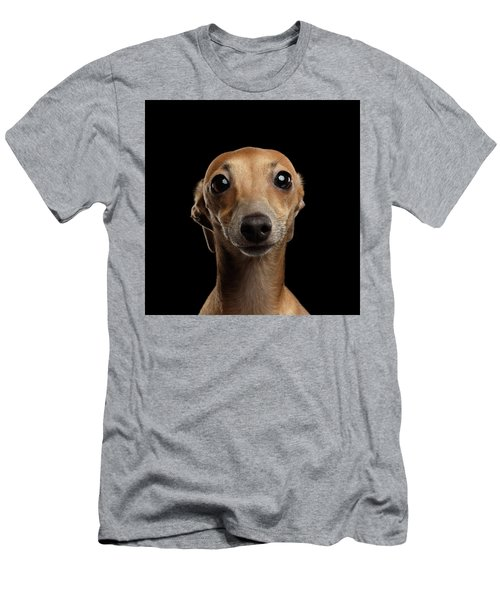 Men's T-Shirt (Athletic Fit) featuring the photograph Closeup Portrait Italian Greyhound Dog Looking In Camera Isolated Black by Sergey Taran