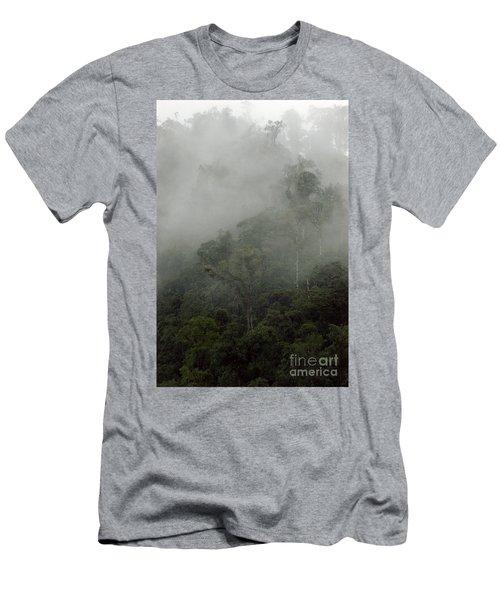 Cloud Forest Men's T-Shirt (Slim Fit) by Kathy McClure