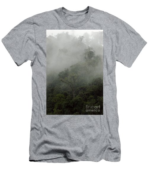 Cloud Forest Men's T-Shirt (Athletic Fit)
