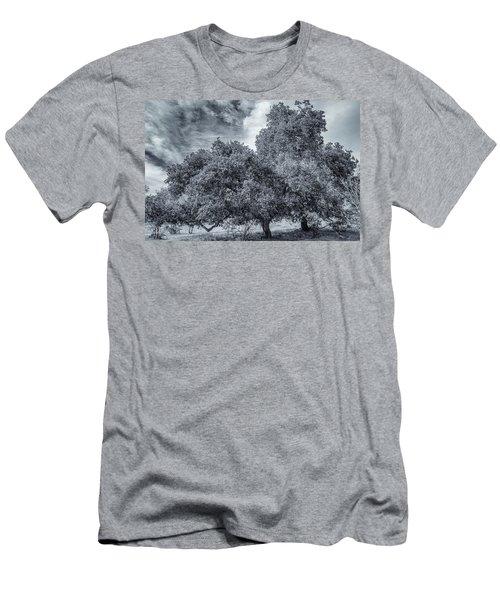 Coast Live Oak Monochrome Men's T-Shirt (Athletic Fit)