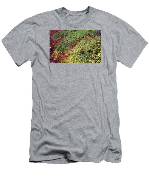 Coastal Flowers And Ice Plant Men's T-Shirt (Slim Fit) by Ted Pollard