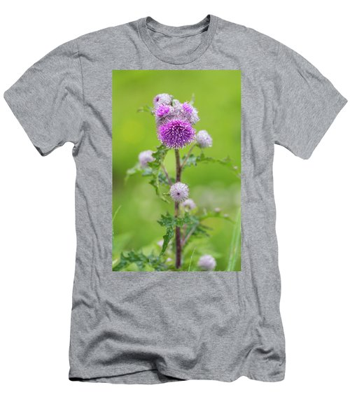 Cobweb Thistle Men's T-Shirt (Athletic Fit)