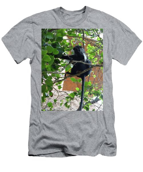 Colobus Monkey Eating Leaves In A Tree - Full Body Men's T-Shirt (Athletic Fit)