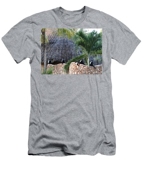 Colobus Monkey Resting On A Wall Men's T-Shirt (Athletic Fit)